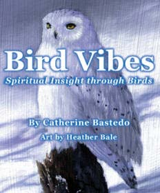 Bird Vibes Cards